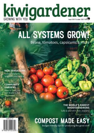 kg509 october 2021 front cover